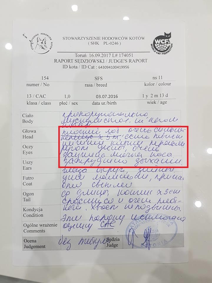 Описание судьи Наталя Розкова