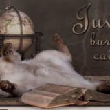juvilla